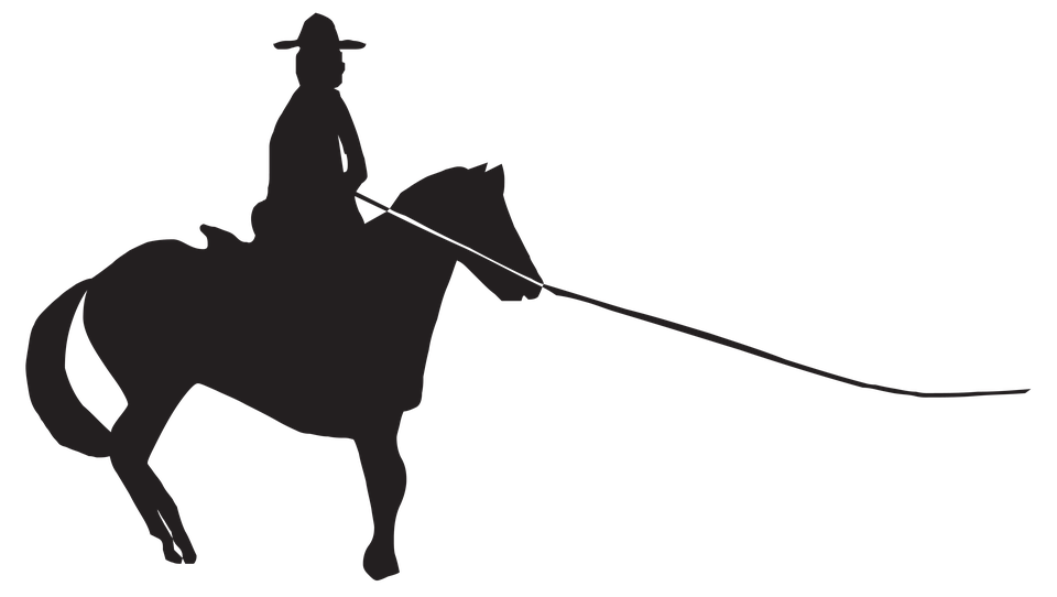 Horse, Sports, Competition