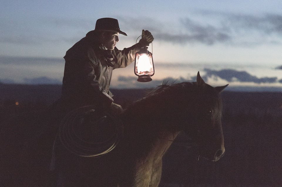 Guy, Man, Male, People, Side, View, Cowboy, Ride, Horse