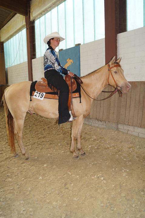 Horse, Dun, Cowboy, Woman, Ride