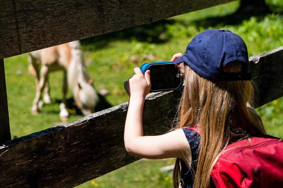 Girl, Fence, Wood Fence, Horse, Foal, Photo, Photograph