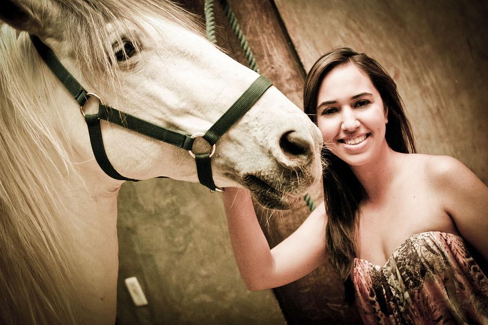 Goiânia, Haras, Horse