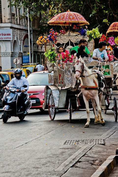 Horse Carriage, Horse, Victorian, India, Traffic