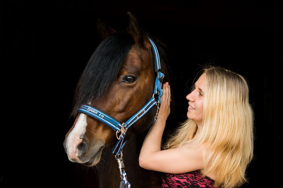 Horse, Portrait, Human, Girl, Woman, Reiter, Horsewoman