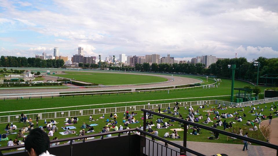 Racecourse, Horse Racing, Horse, Gambling