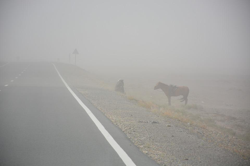 Sand Storm, Man, Horse, Mongolia