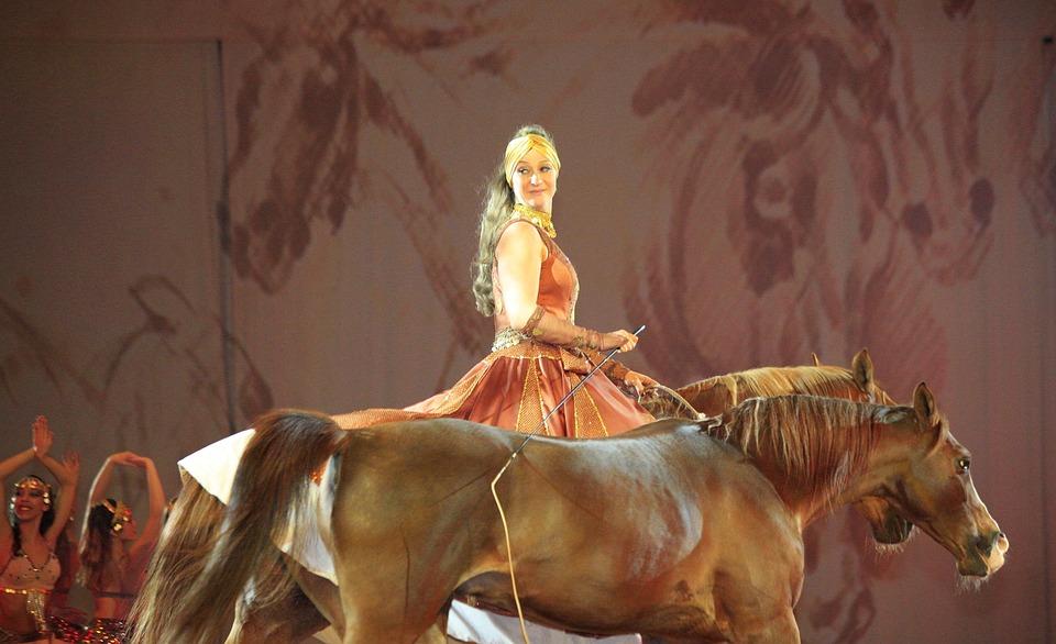 Horse, Show, Horse Show, Dressage, Horses