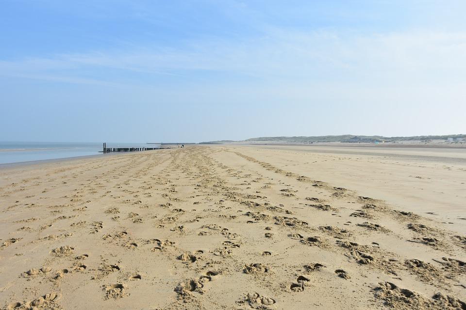 Horse Tracks, Beach, Ride, North Sea, Horizon, Riding