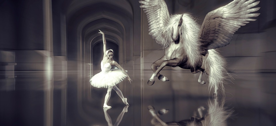free photo horse wing elegant ballet dancer girl hall dance max pixel