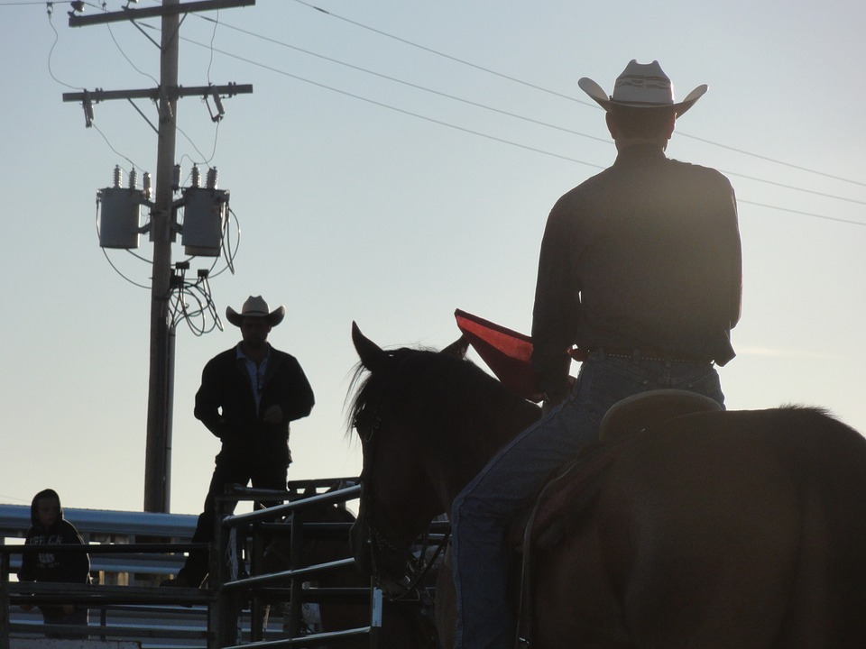 Free Photo Horseback Riding Cowboy Jump Western Horse Rodeo Max Pixel