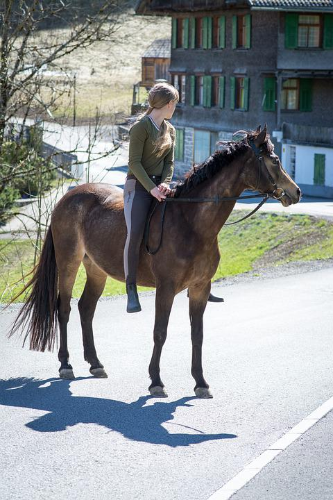 Horseback Riding, Woman, Equine, Horse, Ride