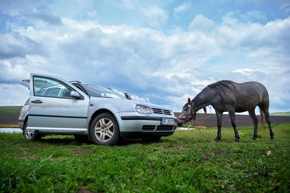 Horse, Vw, Horsepower