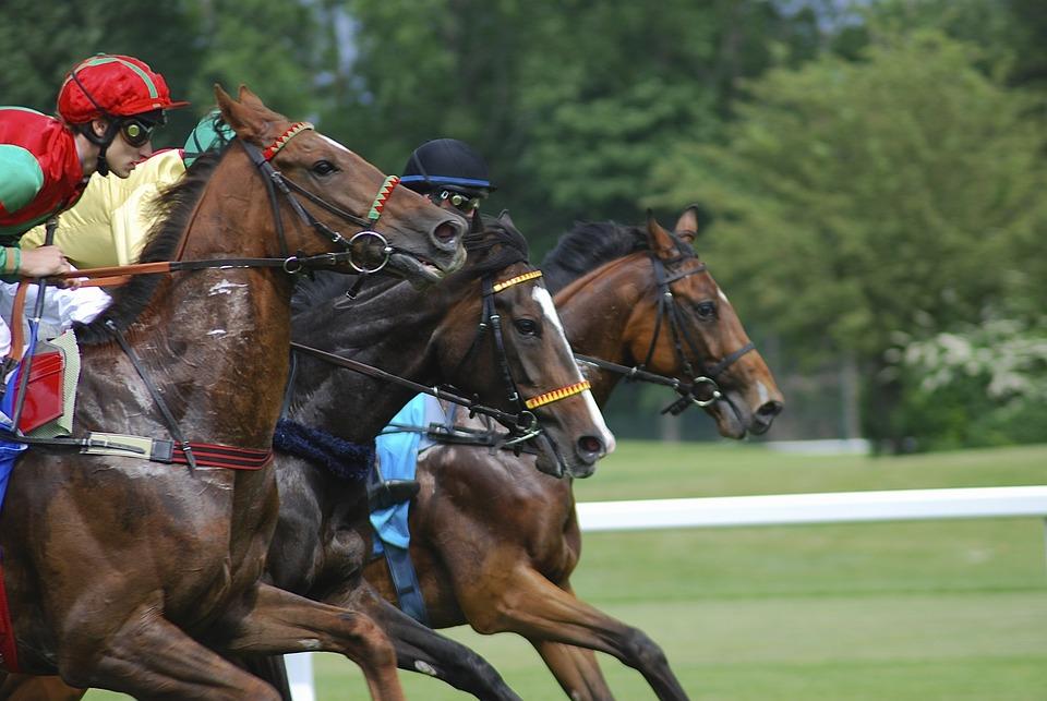 Racecourse, Horses, Strained, Sport, Riem, Gallop