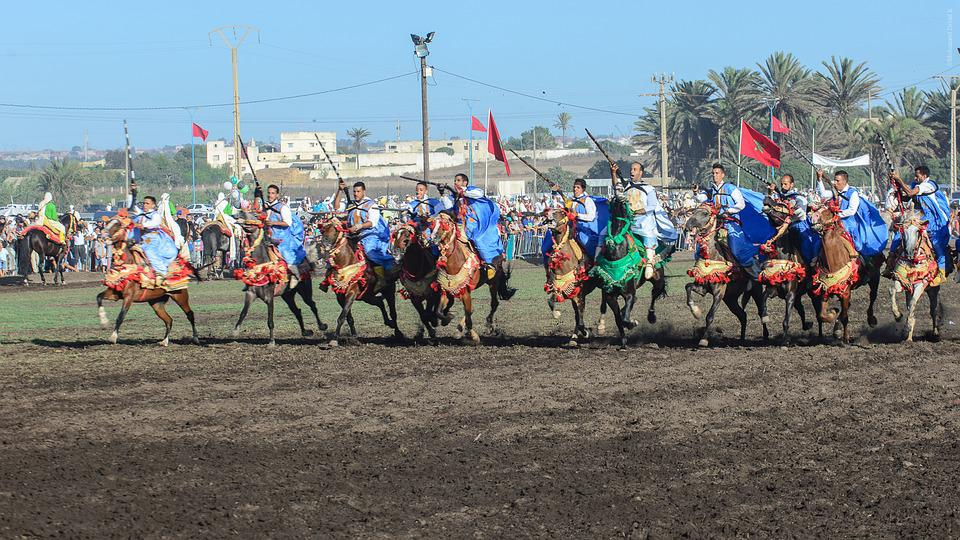 Fantasia, Tbourida, Game Powder, Horse, Horses