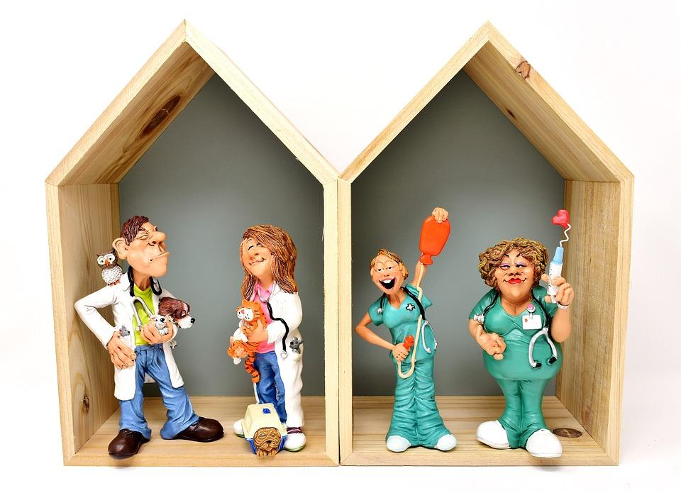 Veterinarian, Animals, Vet, Hospital, Nurses, Figures