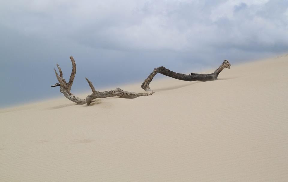 Sand, Desert, Beach, Dunes, Holiday, Hot, Road, Summer