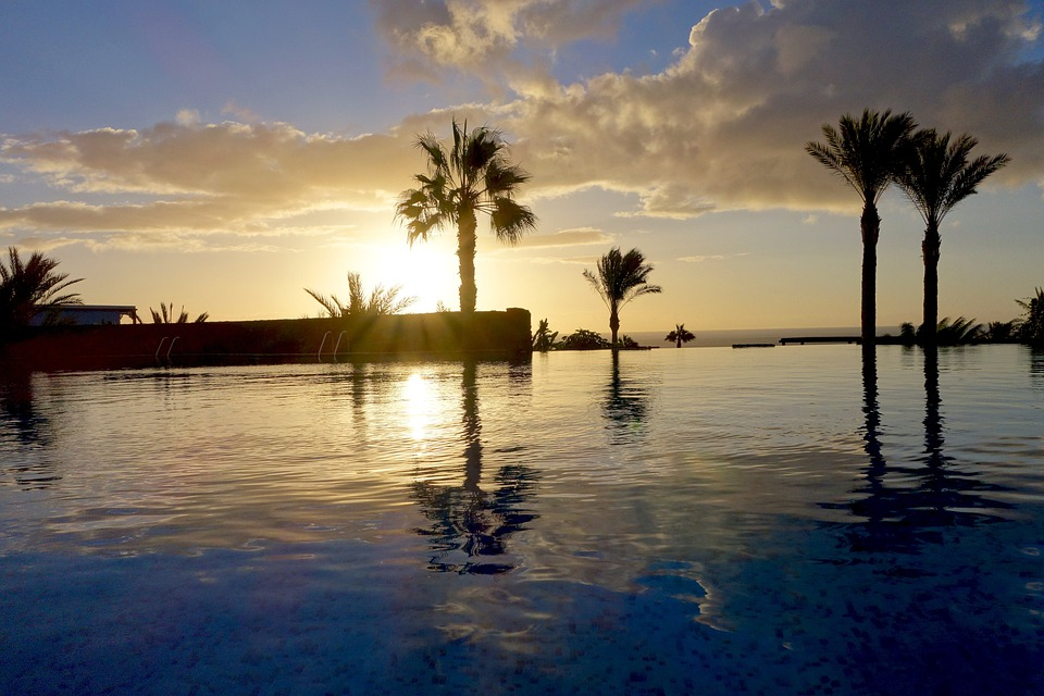 Palm Trees, Pool, Holiday, Hotel, Mood, Swimming Pool