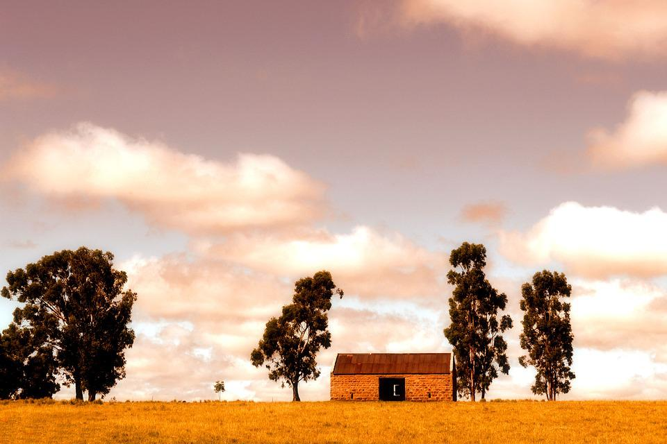 Farming, Countryside, Landscape, Autumn, House, Trees