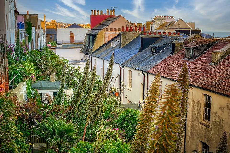 House, Residence, Bushes, Plant, Roofs, Garden, England