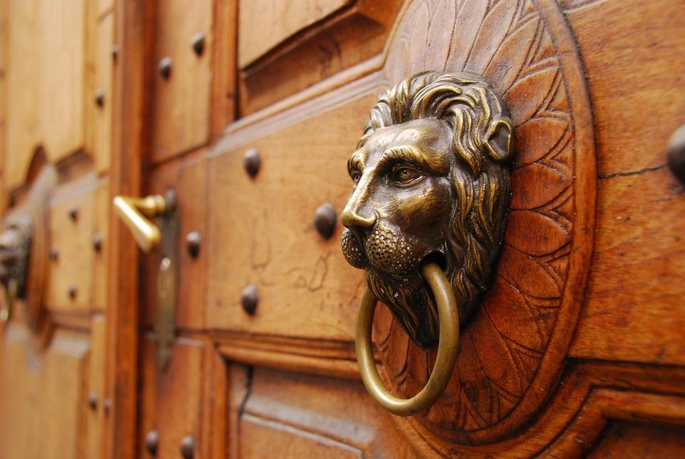 Door, Wood, Lion, Old Door, House Entrance, Goal, Input