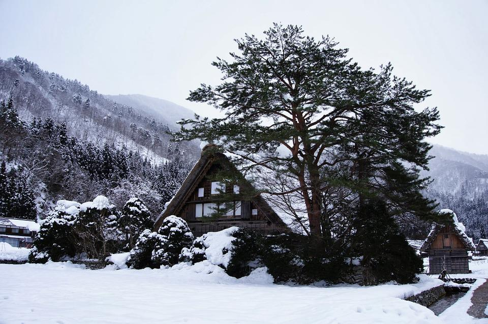 Gassho Village, Snow, Japan, Winter, Mountain, House