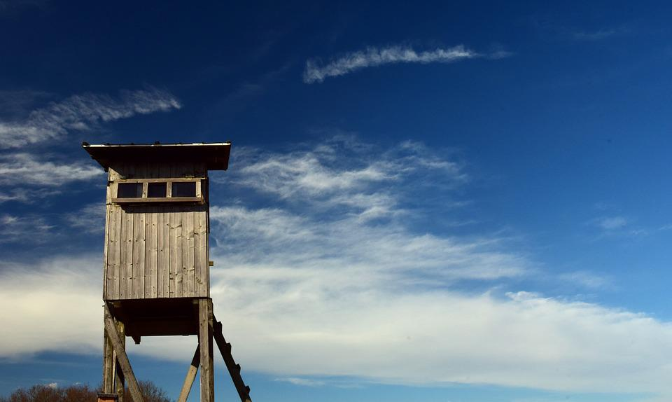Perch, Delight, Hunts, Hunt, Wood, House, View, Clouds