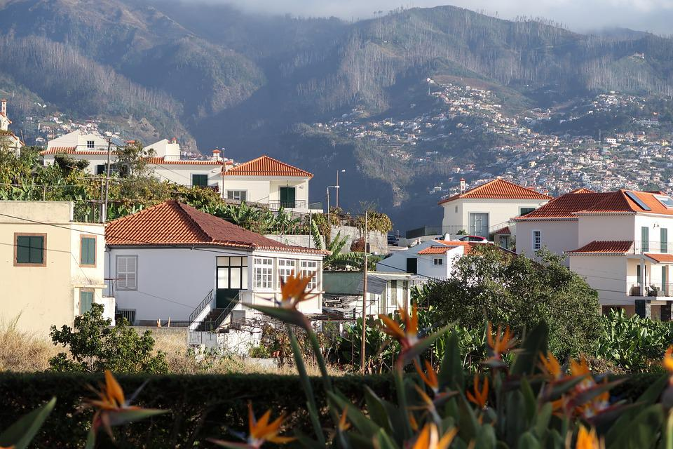Madeira, House, Town, Architecture, Roof, Travel