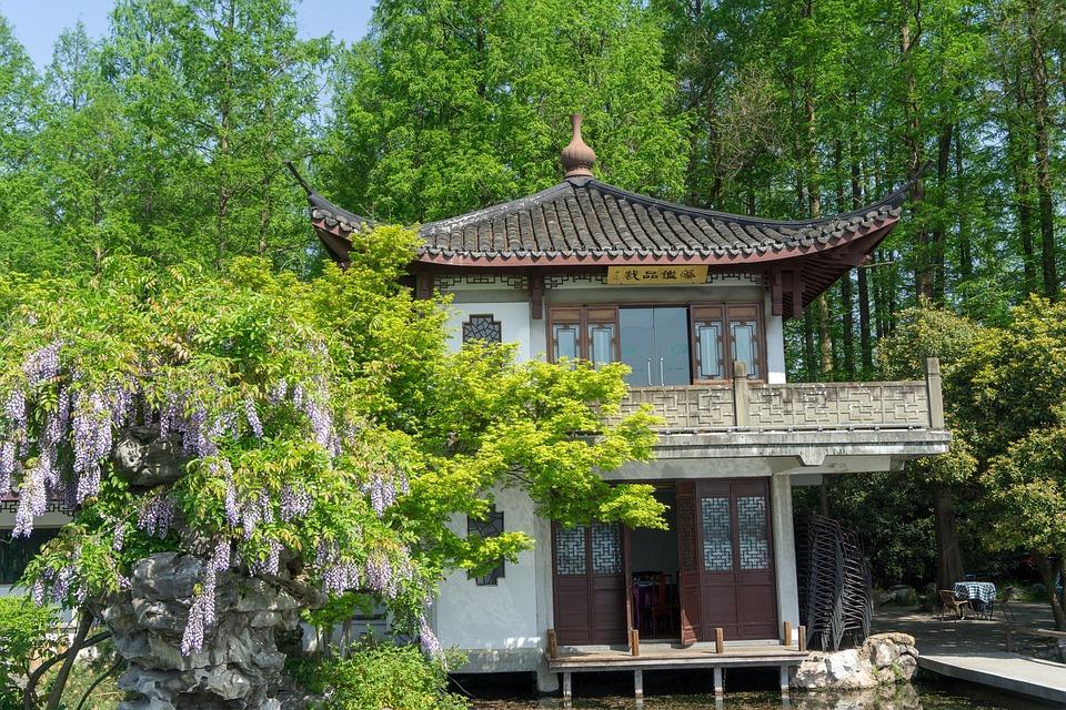 Wood, Wooden, Tree, House, Garden, Park, Tourism, Plant