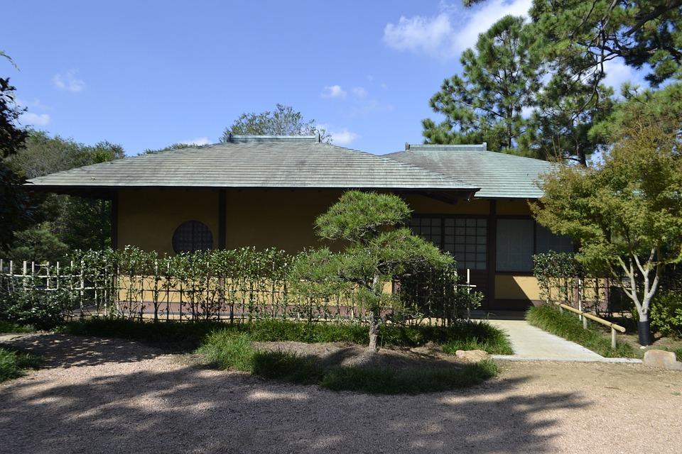 Japanese Garden, Tree, Houston Texas, Flower Garden