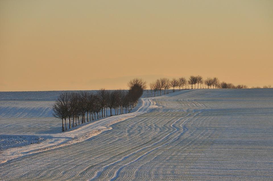 Hüpstedt, Winter, Landscape, Lighting, Trees, Wintry