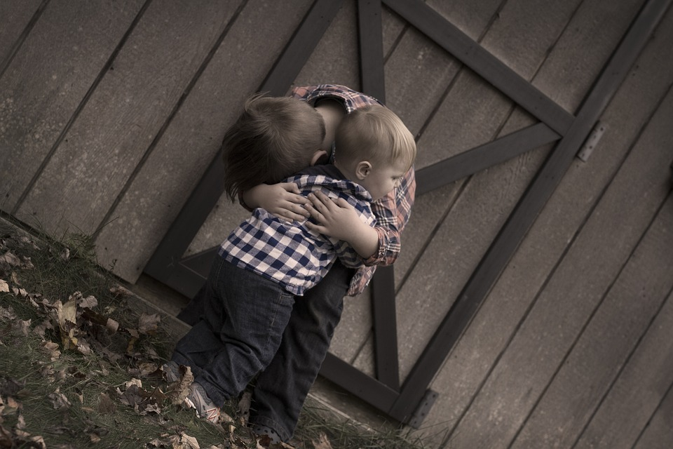 Brothers, Hugging, Barn Door, Boy, Together, Children
