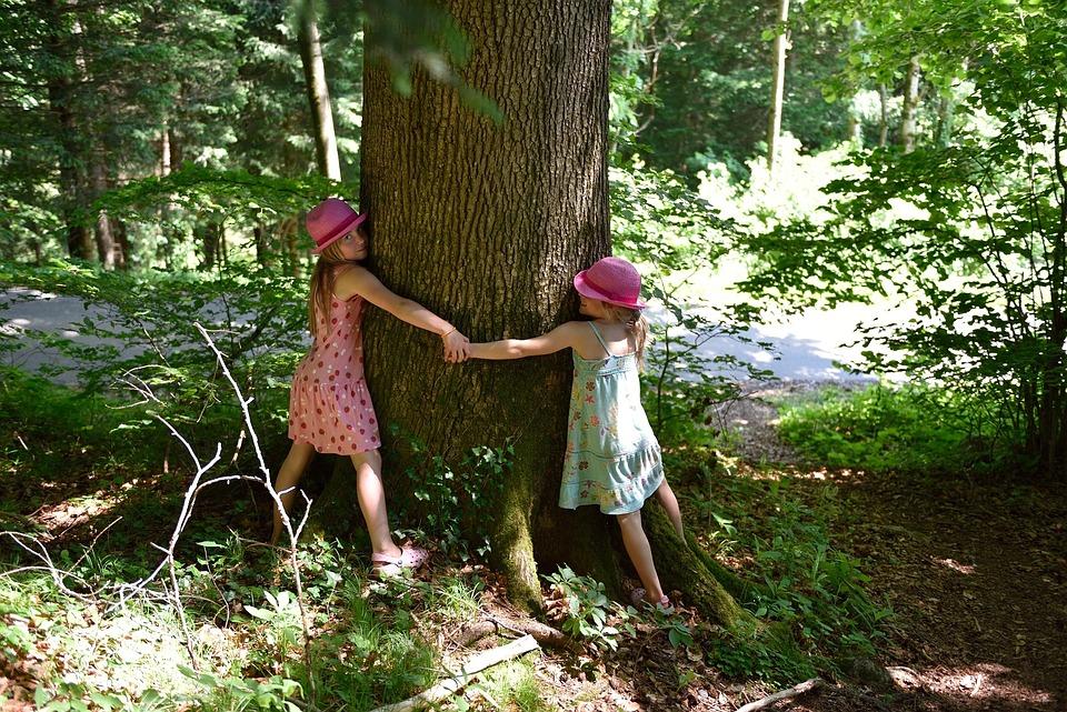Personal, Human, Children, Nature, Hug, Tree