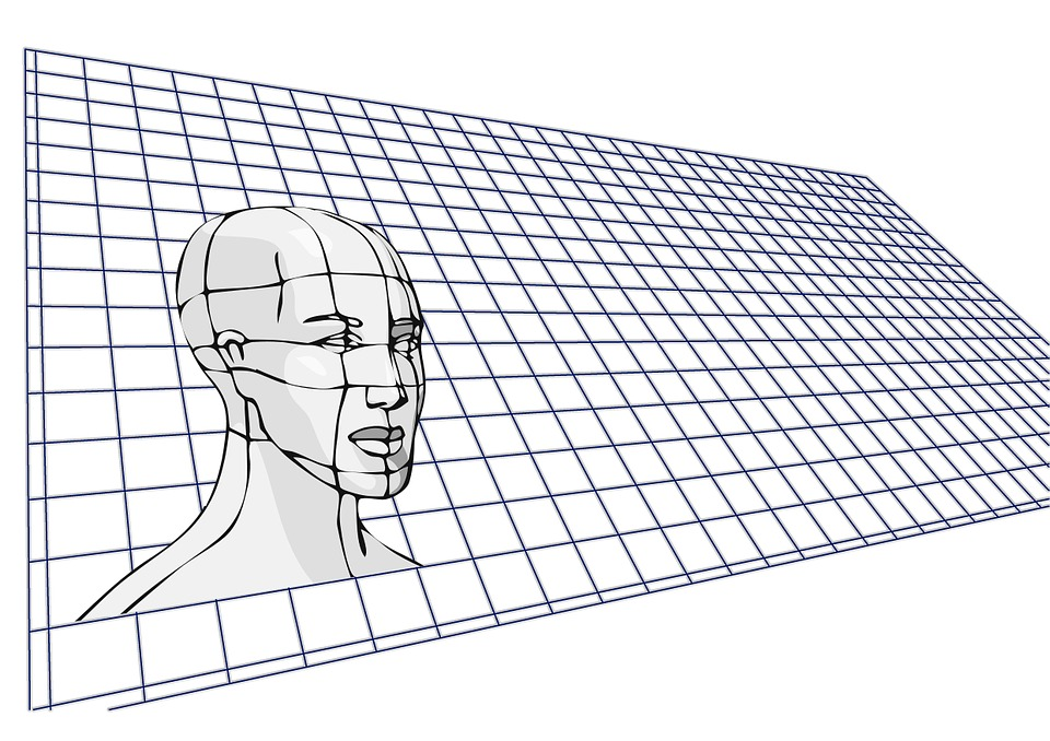 Web, Head, Face, Grid, Human, Mapping, Skull, Science