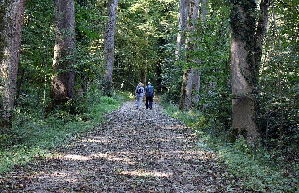 Leisure, Hobby, Hiking, Walk, Human, Pair, Man, Woman
