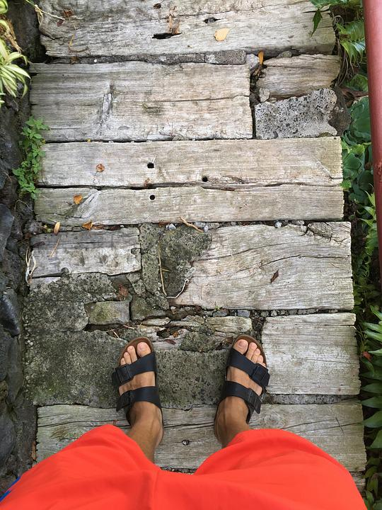 Tree, Wood, Nature, Stone, Human, Summer, Sandals, Out