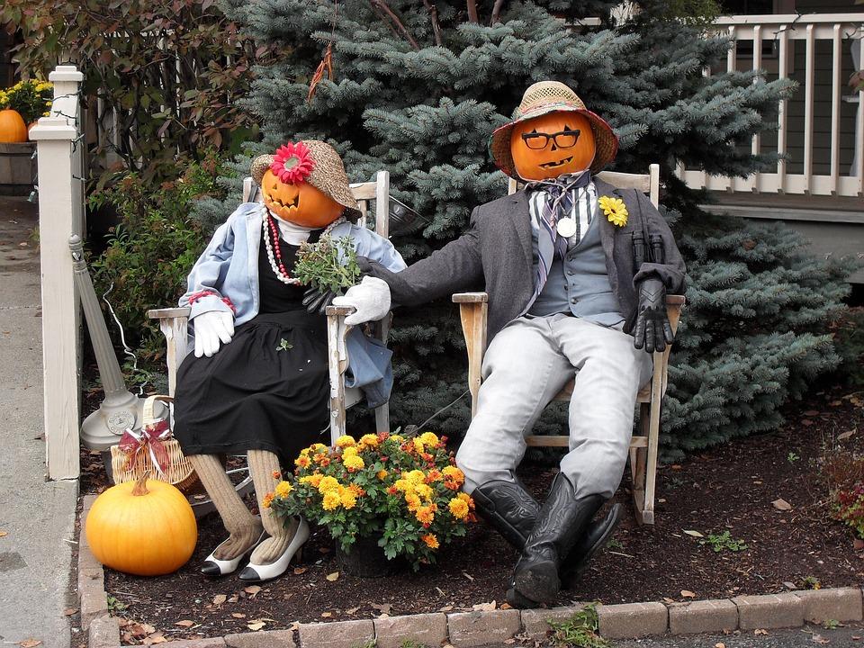Pumpkin, Jack-o-lantern, Fall, Outdoor, Humor