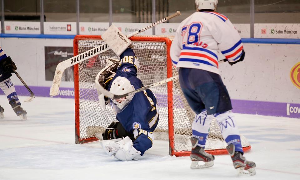 Ice Hockey, Sport, Athlete, Ice, Hockey, Skate, Play