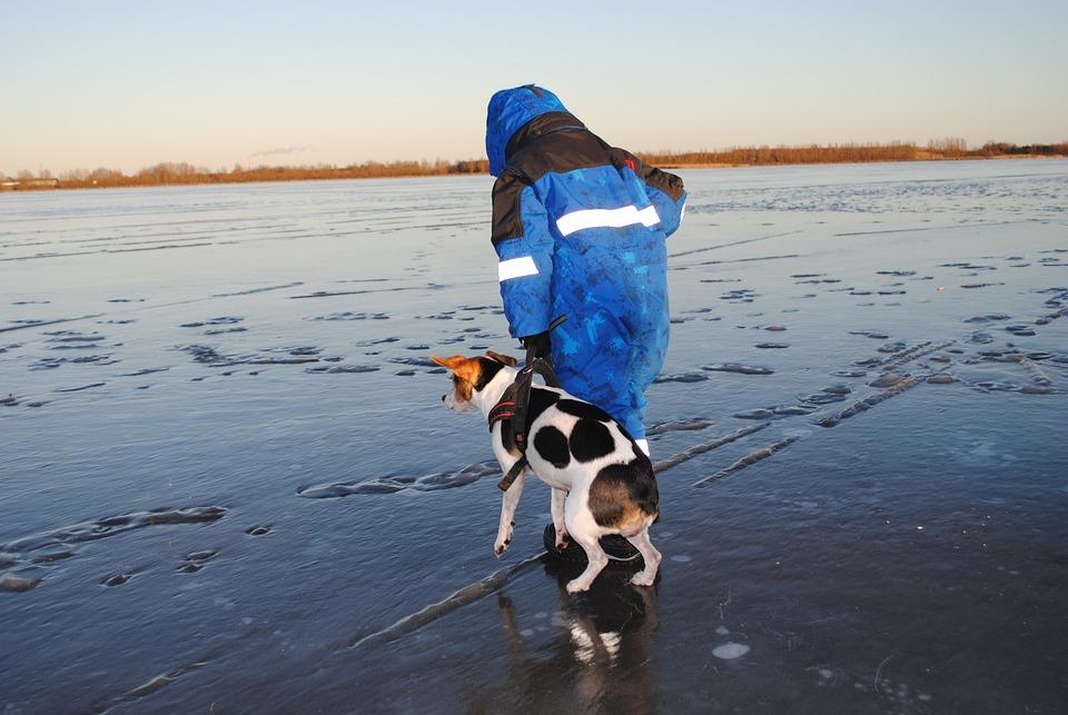 Winter, Dog, Boy, Ice Cream, Lake, Frozen Lake