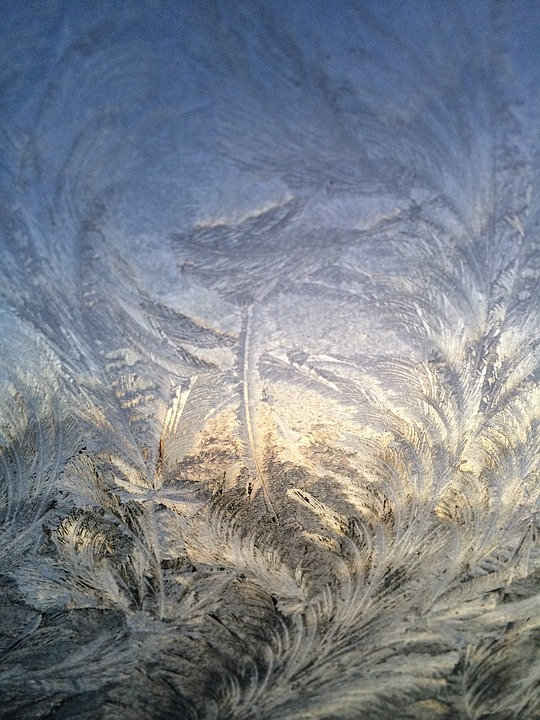 Frost, Winter, Cold, Ice Crystals, Ice