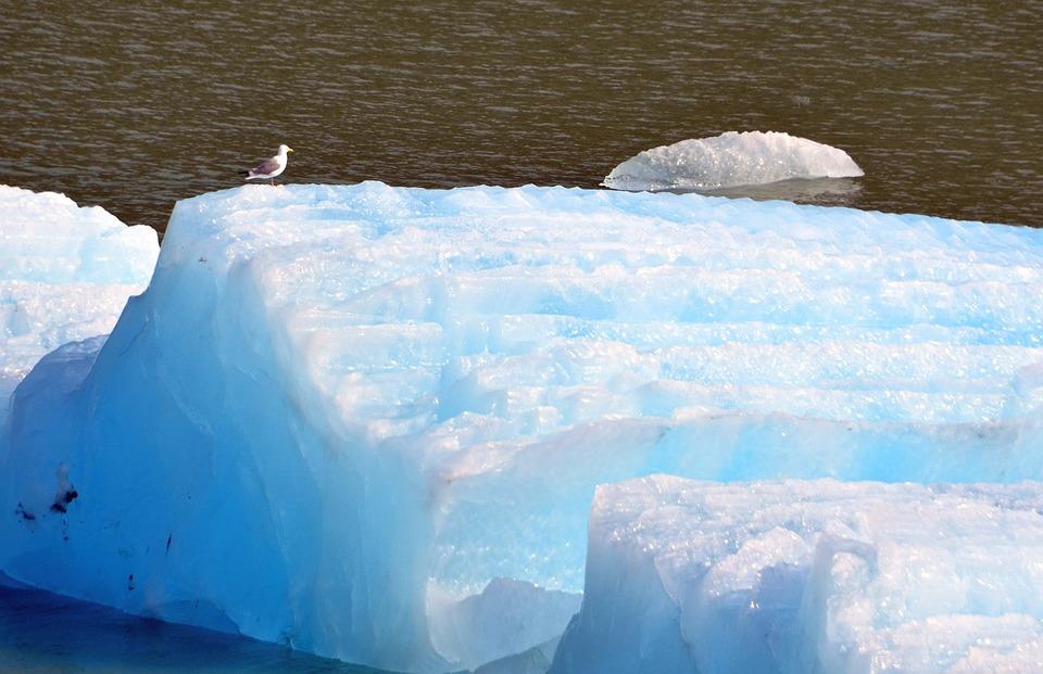 Ice Floe, Winter, Season, Nature, Outdoors