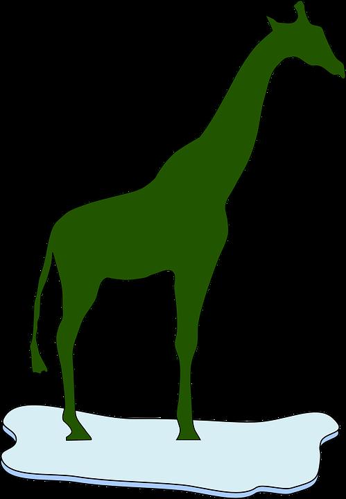 Giraffe, Green, Silhouette, Ice, Animal, Mammal