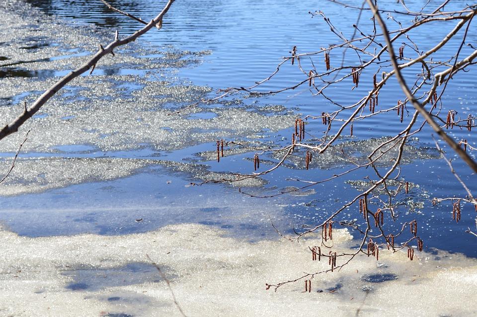 Spring, Sea, Ice