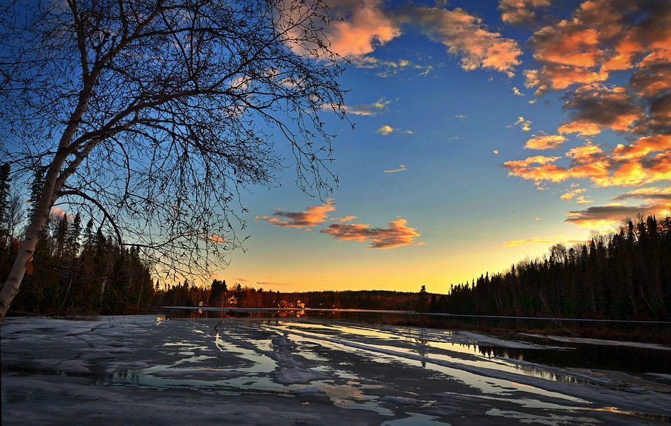 Thaw, Sunset, Ice, Tree, Clouds, Nature, Evening