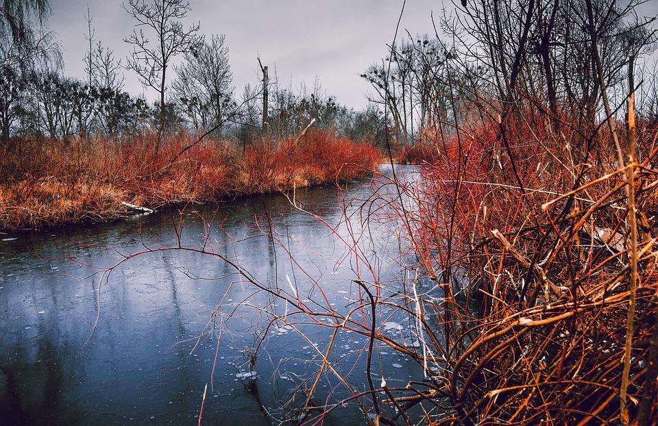 River, Ice, Landscape, Frozen, Channel, Tile, Mood
