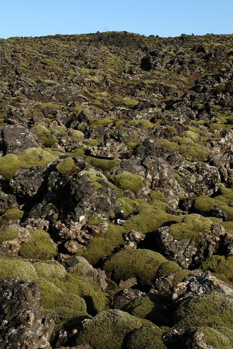 Lava Field, Iceland Landscape, Volcanic