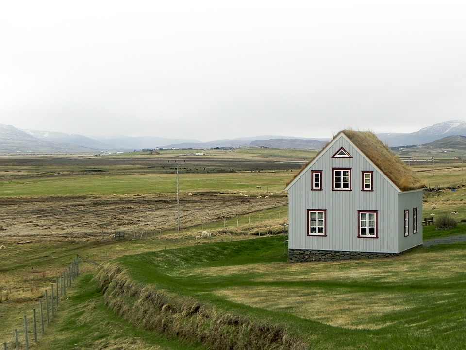 Iceland, Landscape, Nature, Grass, Green, Hut