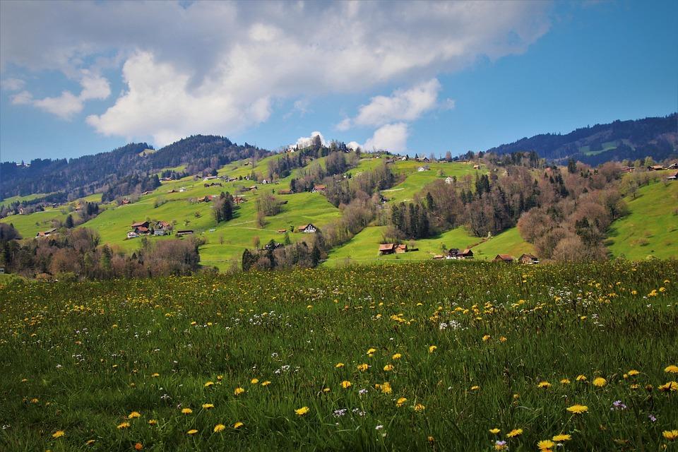 Meadows, Mountains, Alpine Village, Idyll