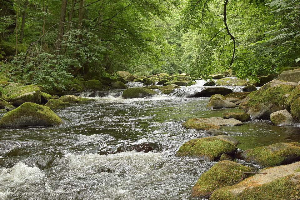 Bode, River, Water, Stones, Idyllic, Mood, Forest
