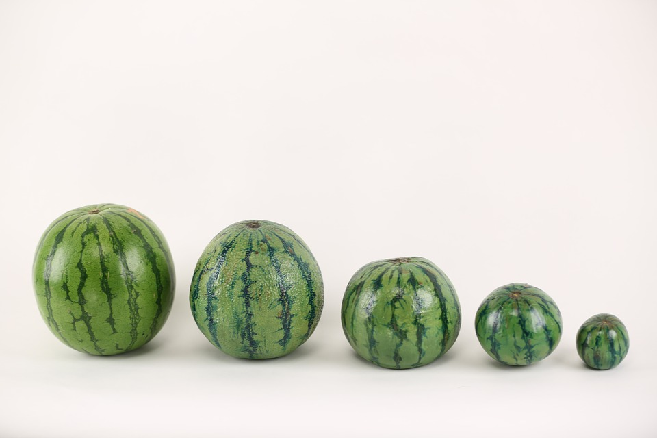Watermelon, Illusion, Paint