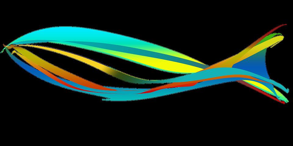 Fish, Image, Illustration