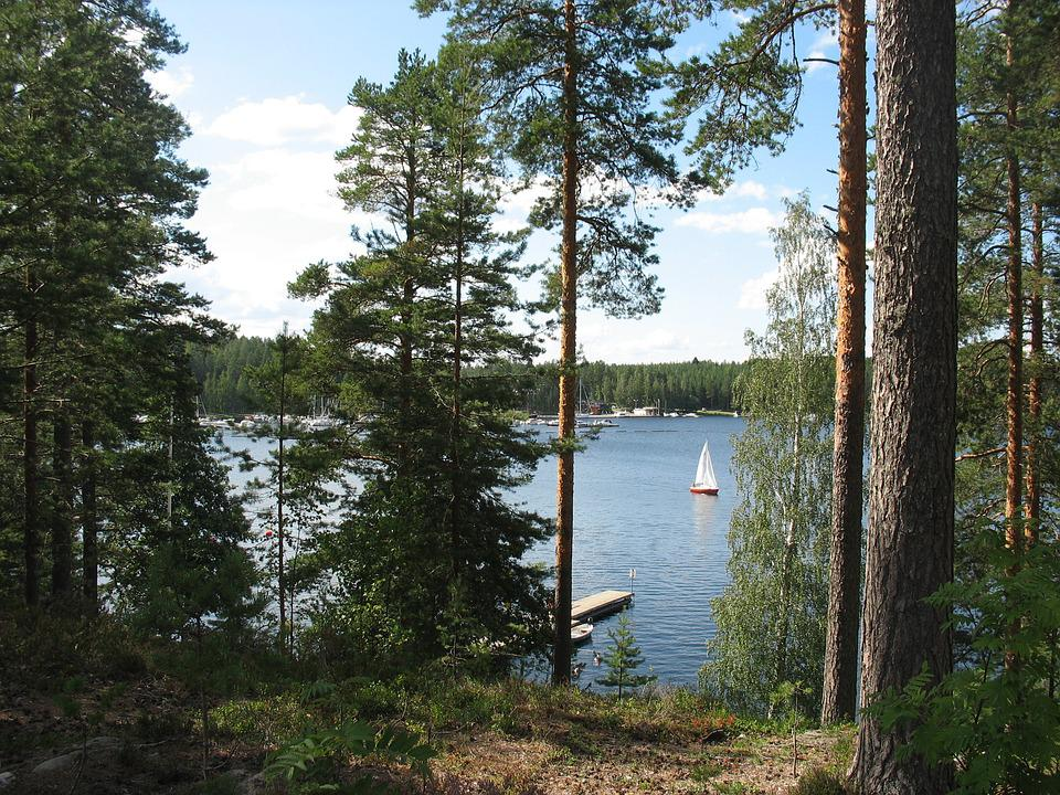 Finland, Imatra, Saimaa, Lake, Forest, Landscape